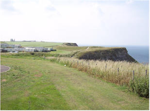 Dog Friendly Whitby Caravan Sites